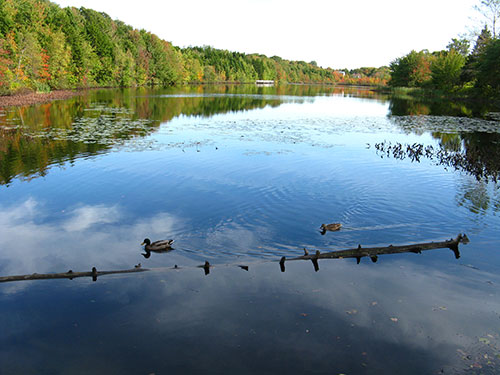 Oathill Lake, Dartmouth, Nova Scotia