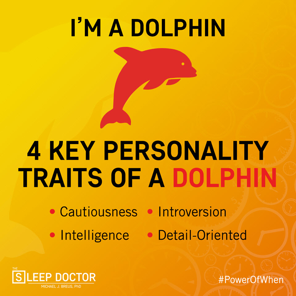 do you know your chronotype marlies cohen marlies cohen chronotype dolphin