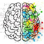 Understanding Left and Right Brain Functions