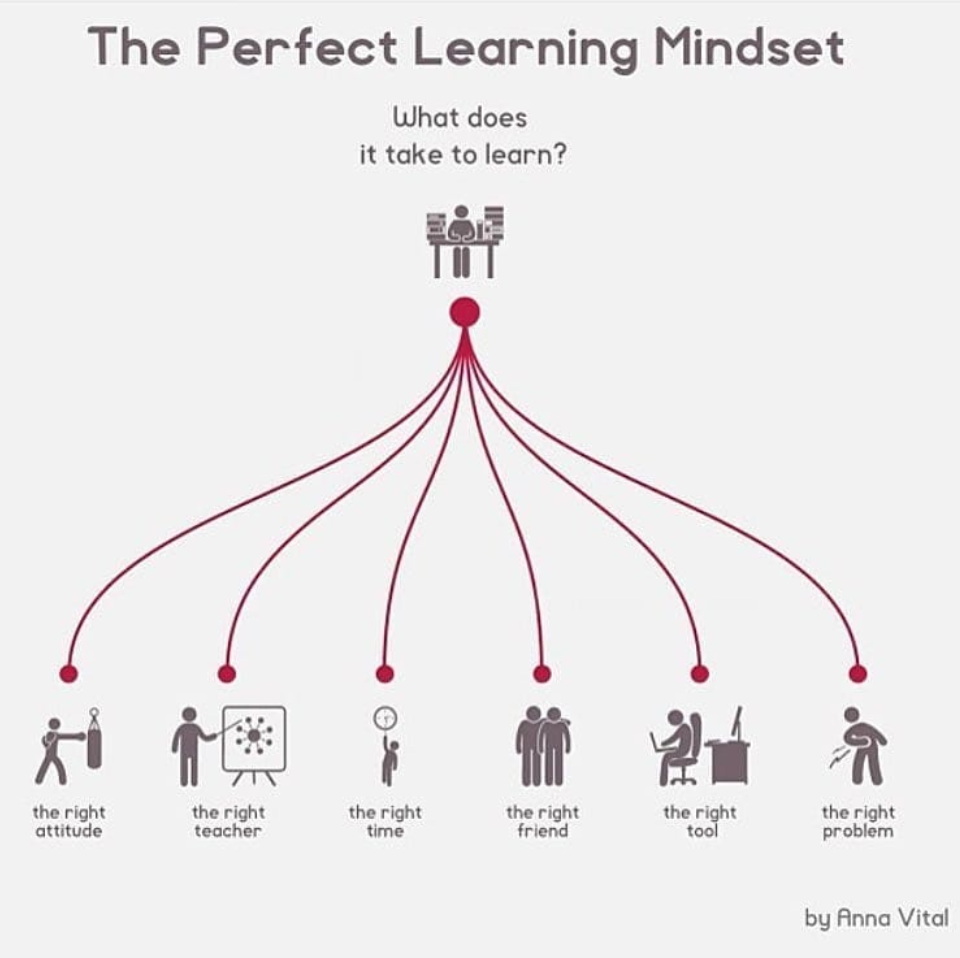the perfect learning mindset